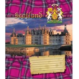 фото Тетрадь в клетку на гребне Пересвет «Шотландия». В ассортименте