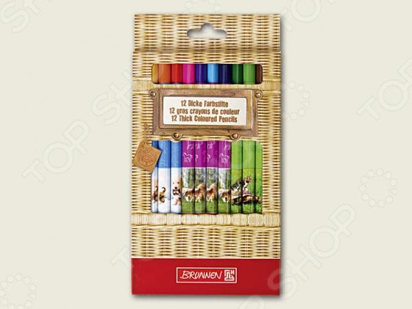 Набор карандашей цветных Brunnen 29856-94\BCD