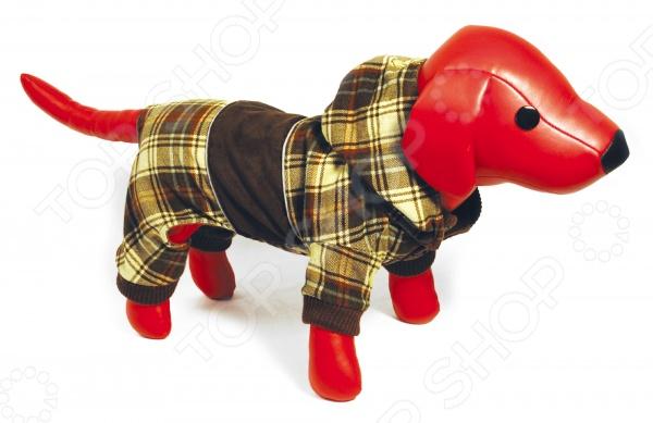 Комбинезон для собак DEZZIE Джой. Цвет: коричневыйКомбинезоны<br>Комбинезон для собак DEZZIE 561505 это удобный комбинезон для собак, в котором ваш питомец будет чувствовать себя тепло и комфортно. Кроме того, собака будет выглядеть модно, оригинально и невероятно стильно, вы можете даже подобрать комбинезон в тон со своей курткой. Рукава на липучках, воротник оторочен мехом. Комбинезоны такого типа незаменимы при прогулке с собакой в осенне-зимний период или просто холодный день.<br>