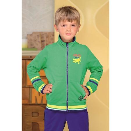 Купить Толстовка для мальчика Detiland AW15-UKN-BSW-025. Цвет: зеленый