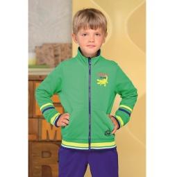 фото Толстовка для мальчика Detiland AW15-UKN-BSW-025. Цвет: зеленый. Рост: 110 см
