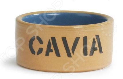 Миска для морской свинки Beeztees 801480 Cavia