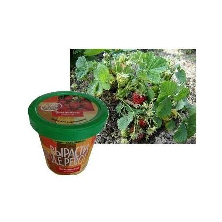 Купить Набор для выращивания Зеленый капитал Вырасти, дерево! «Земляника ананасная»