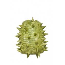фото Рюкзак MadPax Gator Full. Цвет: зеленый
