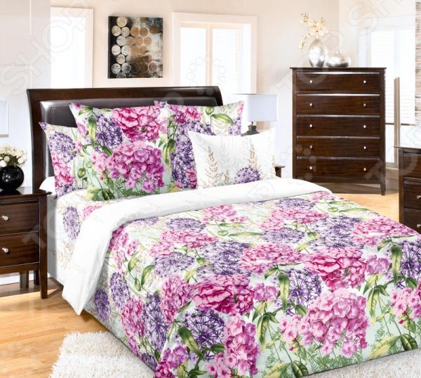 Комплект постельного белья Белиссимо «Флоксы». Ткань: бязь флоксы сорта в москве