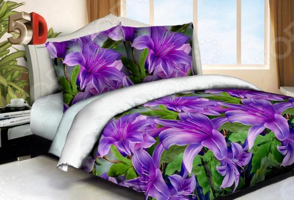 Комплект постельного белья «Ночь нежна». 2-спальный2-спальные<br>Комплект постельного белья Ночь нежна это великолепный выбор для любого интерьера. Чтобы ваш сон всегда был приятным, а пробуждение легким, необходимо подобрать то постельное белье, которое будет соответствовать всем вашим пожеланиям. Приятный цвет, нежный принт и высокое качество ткани обеспечат вам крепкий и спокойный сон. Микрофибра, из которой сшит комплект отличается следующими качествами:  Ткань достаточно мягка и приятна на ощупь, не имеет склонности к скатыванию, практически не мнется, не растягивается, не садится, не выгорает, хорошо отстирывается и не теряет при этом своих насыщенных цветов.  Современная технология 5D печати создаёт ощущения, что цветы расцвели у вас в спальни. Рисунок настолько натурален, что вам захочется оказать чудесным вечером в сказочном саду и почувствовать легкий аромат ночных цветов.<br>