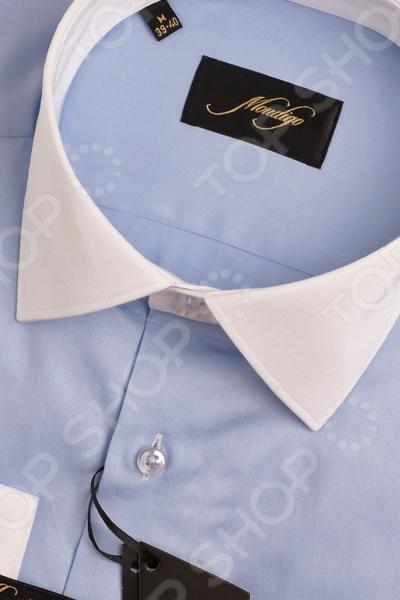 Рубашка Mondigo 501067. Цвет: голубой была и остается классикой мужской моды. Она может считаться показателем отменного вкуса и элегантности её владельца. Эта стильная мужская рубашка будет превосходно смотреться как в рамках делового, так и неформального стиля. С её помощью вы без труда сможете создать уникальный образ, который будет выгодно выделять вас среди остальных мужчин. Данная модель относится к рубашкам зауженного кроя, поэтому она отлично подчеркнет ваш силуэт. Оригинальный дизайн в с контрастным воротником и манжетами позволит составить нескучный образ, который будет уместно смотреться и в офисе, и на торжественных мероприятиях. Особенности рубашки Mondigo 501067:  отложной воротник;  длинный рукав;  манжеты белого цвета. Рубашка Mondigo 501067 выполнена из высококачественного натурального хлопка, поэтому её будет приятного держать в руках, носить, удобно стирать и легко гладить. Изделие отлично подходит для повседневной носки. Она долго вам прослужит, выдерживая при этом многочисленные стирки.
