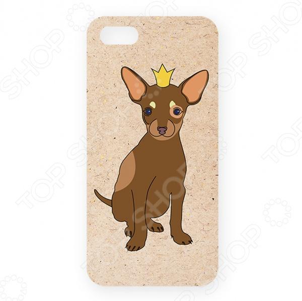 Чехол для iPhone 5 Mitya Veselkov «Той в короне»