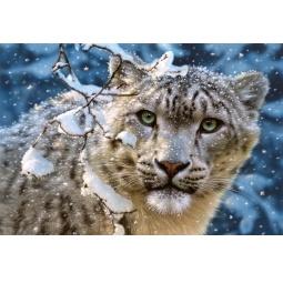 Купить Пазл 1500 элементов Castorland «Снежный леопард»