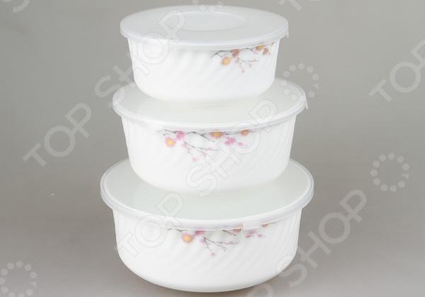 Набор контейнеров для продуктов Rosenberg 1259-1