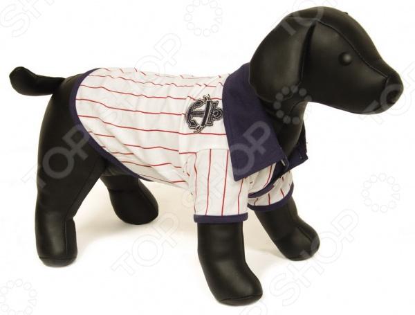 Футболка для собак DEZZIE «Аника» футболка для собак dezzie аника
