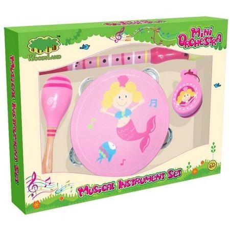 Купить Набор музыкальных инструментов Toys Lab 72007