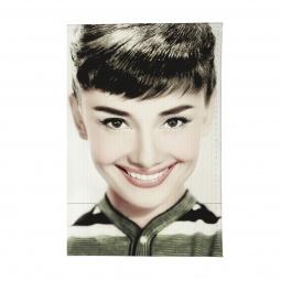 фото Обложка для паспорта Mitya Veselkov «Одри улыбается»
