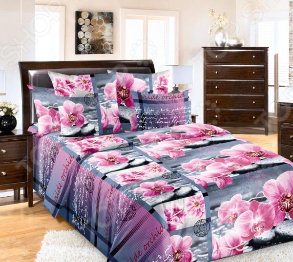 Комплект постельного белья ТексДизайн «Дикая орхидея» плитка дикая вишня купить в виннице