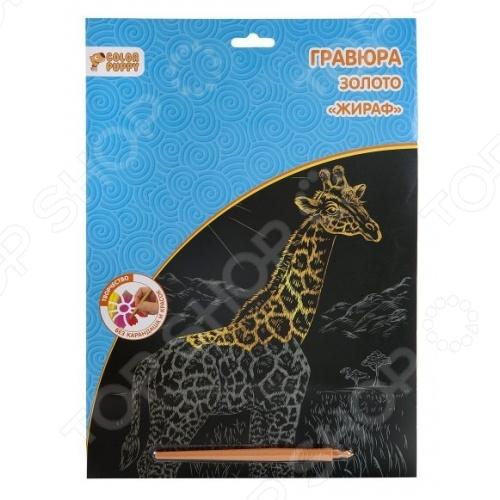 Гравюра маленькая Color Puppy Жираф 95258 это прекрасный набор для детского творчества! Представленная модель непременно увлечет вашу малышку и не заставит ее скучать. Для того, чтобы создать свою гравюру, необходимо снять защитную пленку с карточки и нанеси пластиковым штихелем штрихи. Каждый новый штрих будет открывать все новые и новые части удивительной картинки.
