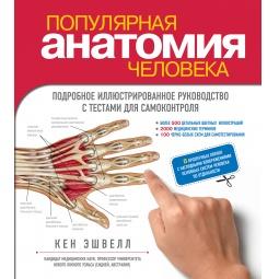 Купить Популярная анатомия человека. Подробное иллюстрированное руководство с тестами для самоконтроля