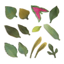 фото Форма для вырубки Sizzix Thinlits Die Сад