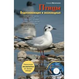 Купить Птицы. Водоплавающие и околоводные (+CD)