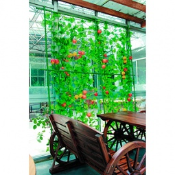 Купить Комплект для вьющихся растений сборный GREEN APPLE GLSCL
