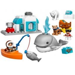 Купить Конструктор игровой LEGO «Вокруг света: Арктика»