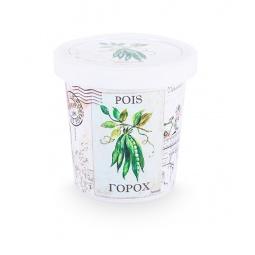 Купить Набор для выращивания Rostokvisa «Горох»