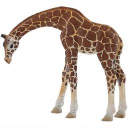 Купить Фигурка-игрушка Bullyland Жираф