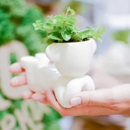 фото Набор для выращивания Экочеловеки Eco «Мечтатель с ушками»