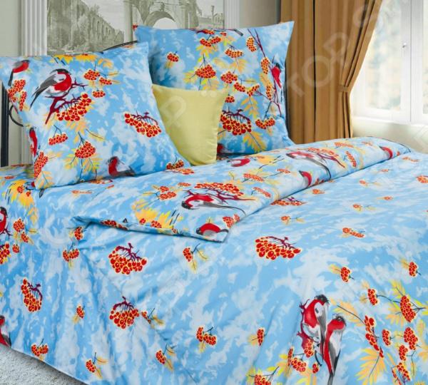 Комплект постельного белья DIANA P&amp;amp;W «Снегири». 2-спальный2-спальные<br>Комплект постельного белья DIANA P W Снегири это незаменимый элемент вашей спальни. Человек треть своей жизни проводит в постели, и от ощущений, которые вы испытываете при прикосновении к простыням или наволочкам, многое зависит. Чтобы сон всегда был комфортным, а пробуждение приятным, мы предлагаем вам этот комплект постельного белья. Приятный цвет и высокое качество комплекта гарантирует, что атмосфера вашей спальни наполнится теплотой и уютом, а вы испытаете множество сладких мгновений спокойного сна.  Комплект сшит из приятной на ощупь микрофибры. Материал, состоящий на 100 из полиэстера, достаточно мягок, не имеет склонности к скатыванию, линянию, протиранию, обладает повышенной гигроскопичностью. Кроме того, он гипоаллергенен, хорошо отстирывается и не теряет своих насыщенных цветов.  Изображение нанесено на ткань с применением современных технологий печати. Качественный рисунок будет долго радовать вас своим видом. Перед первым применением комплект постельного белья рекомендуется постирать. Перед этим выверните наизнанку наволочки и пододеяльник. Для сохранения цвета не используйте порошки, которые содержат отбеливатель. Рекомендуемая температура стирки 30 С и ниже без использования кондиционера или смягчителя воды.<br>
