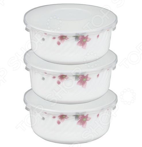 Набор контейнеров для продуктов Rosenberg 1258-3