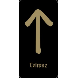 """Купить Руна """"Teiwaz - сильнейшая мужская руна"""" (черная)"""