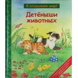 фото Детеныши животных