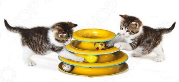 Игрушка для кошек Petstages «Трек»Игрушки для кошек<br>Игрушка для кошек Petstages Трек это удачная игрушка для активной кошки, которая любит поразвлечься даже в ваше отсутствие. С такой игрушкой кошка будет весело проводить время, играя и резвясь. Во время игры кот сможет развить природные инстинкты, которые в условиях домашнего проживания притупляются. В процессе игры ваш домашний любимец может почувствовать себя настоящим охотником. Игрушка провоцирует кота на активные игры, которые являются отличной физической нагрузкой и развлечением. Стоит отметить, что регулярно уделяя хотя бы по 15 минут играм с пушистым любимцем, вы укрепите с ним отношения и сами расслабитесь после трудового дня. Прочная и устойчивая конструкция. Противоскользящие прокладки на дне конструкции. Крупная игрушка не затеряется за мебелью, в отличии от маленьких мышек.<br>