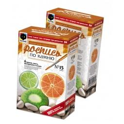 Купить Набор для росписи по камню Фантазер № 15 (апельсин, киви, лайм)