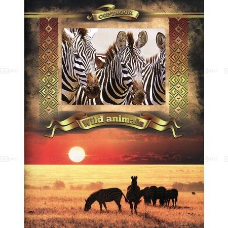 Купить Тетрадь в клетку с вырубкой Ульяновский Дом печати «Дикие животные: Зебры»