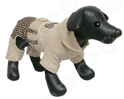 Комбинезон для собак DEZZIE «Биг Босс»Комбинезоны<br>Комбинезон для собак DEZZIE Биг Босс замечательная вещь для заботливых владельцев собак, которые хотят обеспечить комфорт и уют своему питомцу. Изделие разработано с учетом анатомических особенностей животных, поэтому вашей собачке будет удобно и тепло. Кроме того, комбинезон смотрится очень модно. Сшито из флисовой ткани 100 полиэстер .<br>