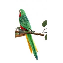 фото Мягкая игрушка Hansa «Попугай красный»