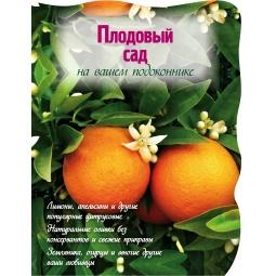 Купить Плодовый сад на вашем подоконнике