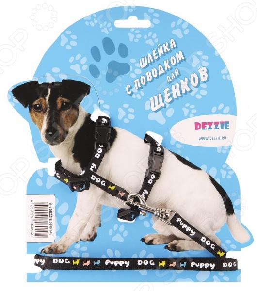 Набор для щенков: шлейка и поводок DEZZIE Puppy Dog набор для щенков шлейка и поводок dezzie 5609547