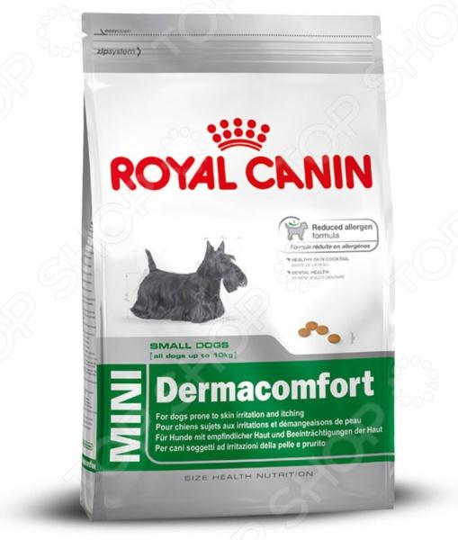 Корм сухой диетический для собак мелких пород Royal Canin Mini DermacomfortЛечебные корма<br>Корм сухой диетический Royal Canin Mini Dermacomfort предназначен специально для собак мелких пород. Представленный вид питания разработан для тех питомцев, которые испытывают проблемы со здоровьем или находятся в группе риска. Тем не менее, ученым из компании Royal Canin удалось сохранить прекрасные вкусовые качества корма, поэтому ваш четвероногий друг будет в восторге от своего нового блюда. Рацион рекомендуется собакам с повышенной чувствительностью кожи, при зуде или раздражениях. Преимущества корма Royal Canin Mini Dermacomfort:  Высокое содержание белков;  Омега-3 и Омега-6 жирные кислоты поддерживают низкий уровень медиаторов воспаления, а также улучшают состояние кожи и шерсти;  Хелаторы кальция ограничивают образование зубного камня. Кормить собаку следует в соответствии со следующим руководством:      Вес собаки     2 кг     3 кг     4 кг     5 кг     6 кг     7 кг     8 кг     9 кг     10 кг       Нормальная активность     39 г     53 г     66 г     78 г     90 г     101 г     111 г     122 г     132 г       Повышенная активность     46 г     62 г     77 г     91 г     104 г     117 г     129 г     141 г     152 г<br>