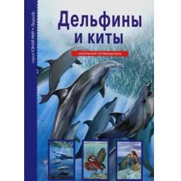 фото Дельфины и киты. Школьный путеводитель