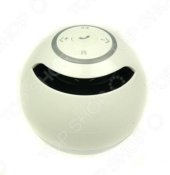 Колонка портативная беспроводная 199304Портативная акустика<br>Колонка портативная беспроводная 199304 представляют собой уникальное сочетание качества, оригинального дизайна и отличного звучания. Этот компактный портативный динамик мощностью всего 3 Вт способен воспроизводить звук полного спектра с прекрасными басами. Колонки имеют беспроводное Bluetooth подключение и micro USB интерфейс. Простой и понятный дизайн с удобной панелью управления, облегчает использование устройства. За счет того, что этот динамик довольно компактен и легок его можно брать с собой куда бы вы не отправились на природу, в путешествие, на дачу или просто в гости. Совместим с картой памяти типа microSD. Корпус выполнен из легкого и прочного ABS-пластика.<br>