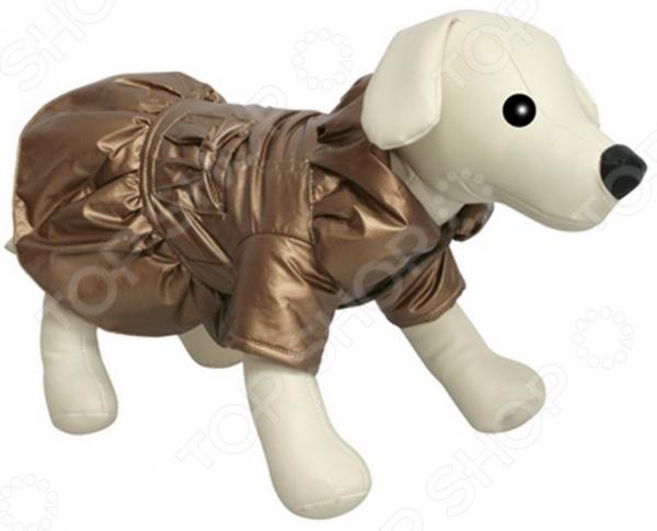 Комбинезон-платье для собак DEZZIE «Моцарт»