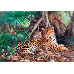 Купить Пазл 3000 элементов Castorland «Ягуары в джунглях»