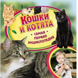 Купить Кошки и котята
