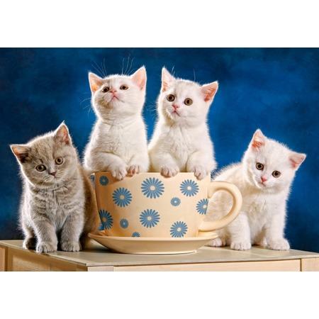 Купить Пазл 500 элементов Castorland «Четыре котенка»