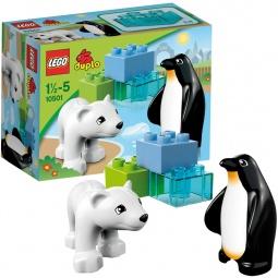 фото Конструктор LEGO Друзья в зоопарке