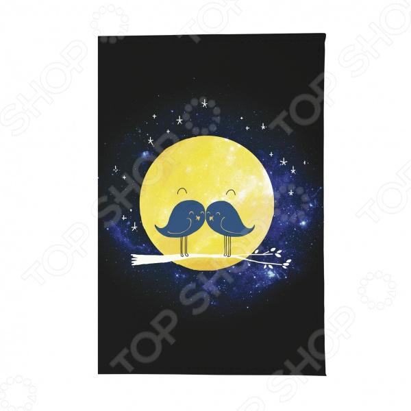 Обложка для паспорта Mitya Veselkov «Усатая Луна» крылья для старк луна