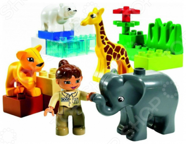 Конструктор LEGO Зоопарк для малышейКонструкторы LEGO<br>Конструктор LEGO Зоопарк для малышей покажет нам, что в большом городском зоопарке пополнение прибыли детеныши диких животных, все они должны быть размещены с удобством и комфортом. Однако помните, что это не так легко, как может показаться, ведь каждый звереныш должен быть размещен по характеру своих условий обитания. Конструктор LEGO Зоопарк для малышей может стать отличным дополнением к уже имеющимся зоопаркам или же отличным набором для старта коллекции игрушечных животных. В наборе 4 фигурки детенышей животных слоненок, львёнок, белый медвежонок и жираф , прозрачные кубики льда для белого мишки, фигурка смотрительницы зоопарка и дополнительные кубики для оформления вольеров. Всего в комплекте 18 элементов.<br>