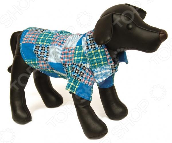 Рубашка для собак DEZZIE «Юми» дмитрий аккерман юми авантюрная история для взрослых