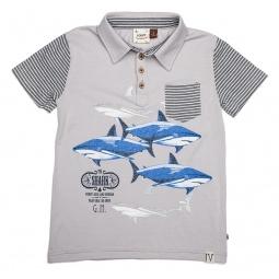Купить Рубашка-поло для мальчиков Fore!! Axel and Hudson The Shark-G.N. Print Polo